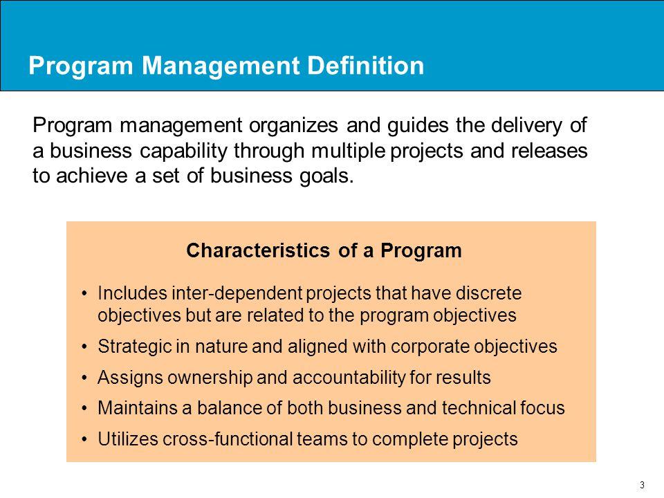 Program Management Definition