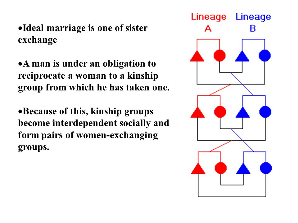 09 marriage and kinship 1 Kinship glossary abbreviations and (1976) a glossary of kinship terms and concepts unpublished ms es = ernest l schusky (1965) marriage to person(s.