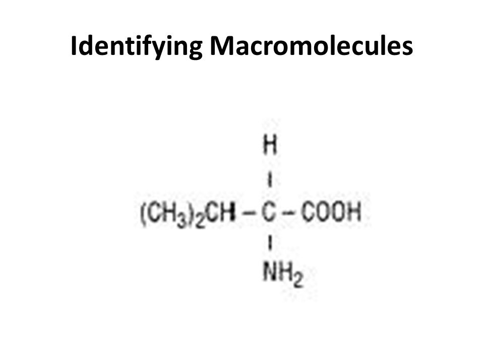 identifying macromolecules As the name suggests, macromolecules are large molecules that make up more than 90% of the total cell mass these biological macromolecules vary greatly in size.