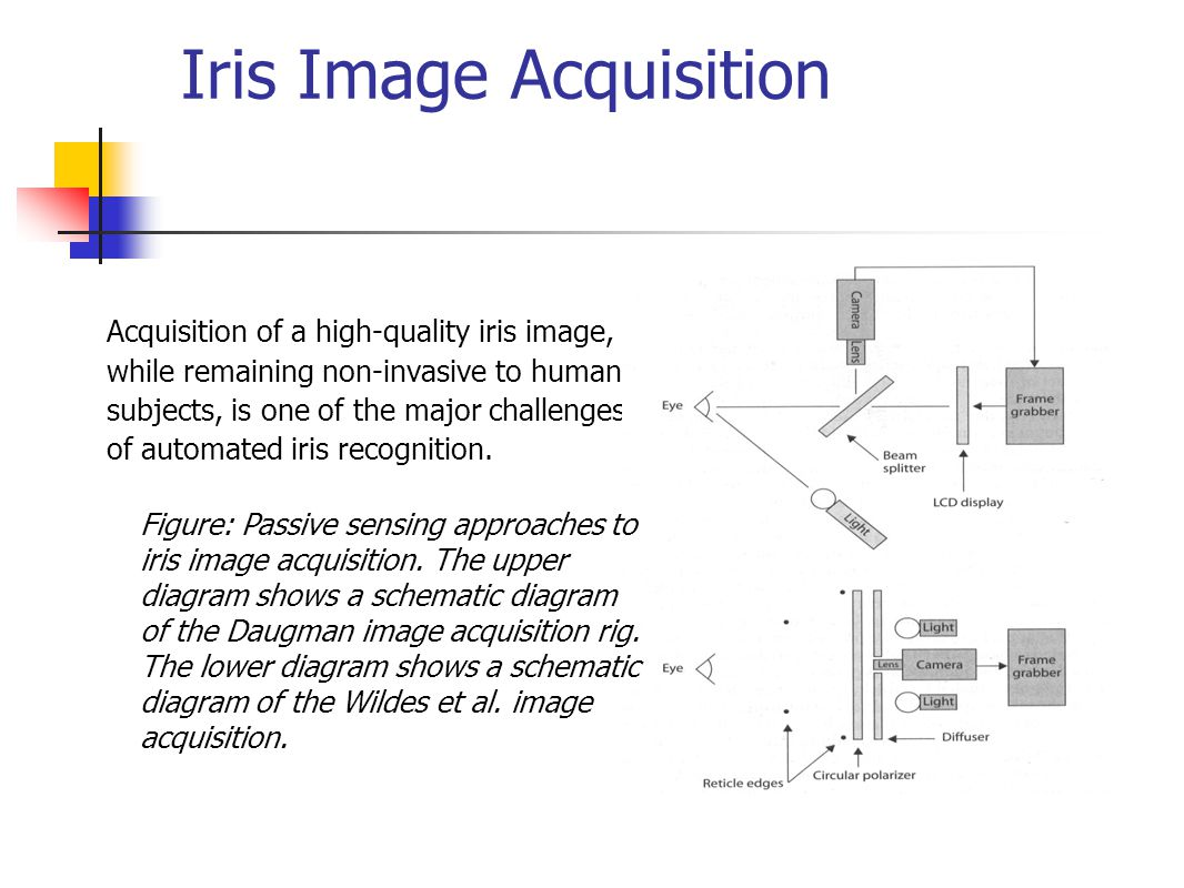 Iris modeling and synthesis ppt video online download iris image acquisition pooptronica Choice Image