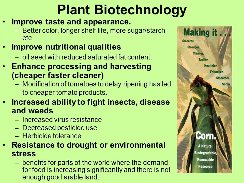 Shoud Biotechnology Be Used To Prolong