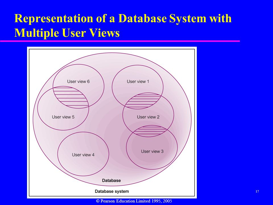 Representation of a Database System with Multiple User Views