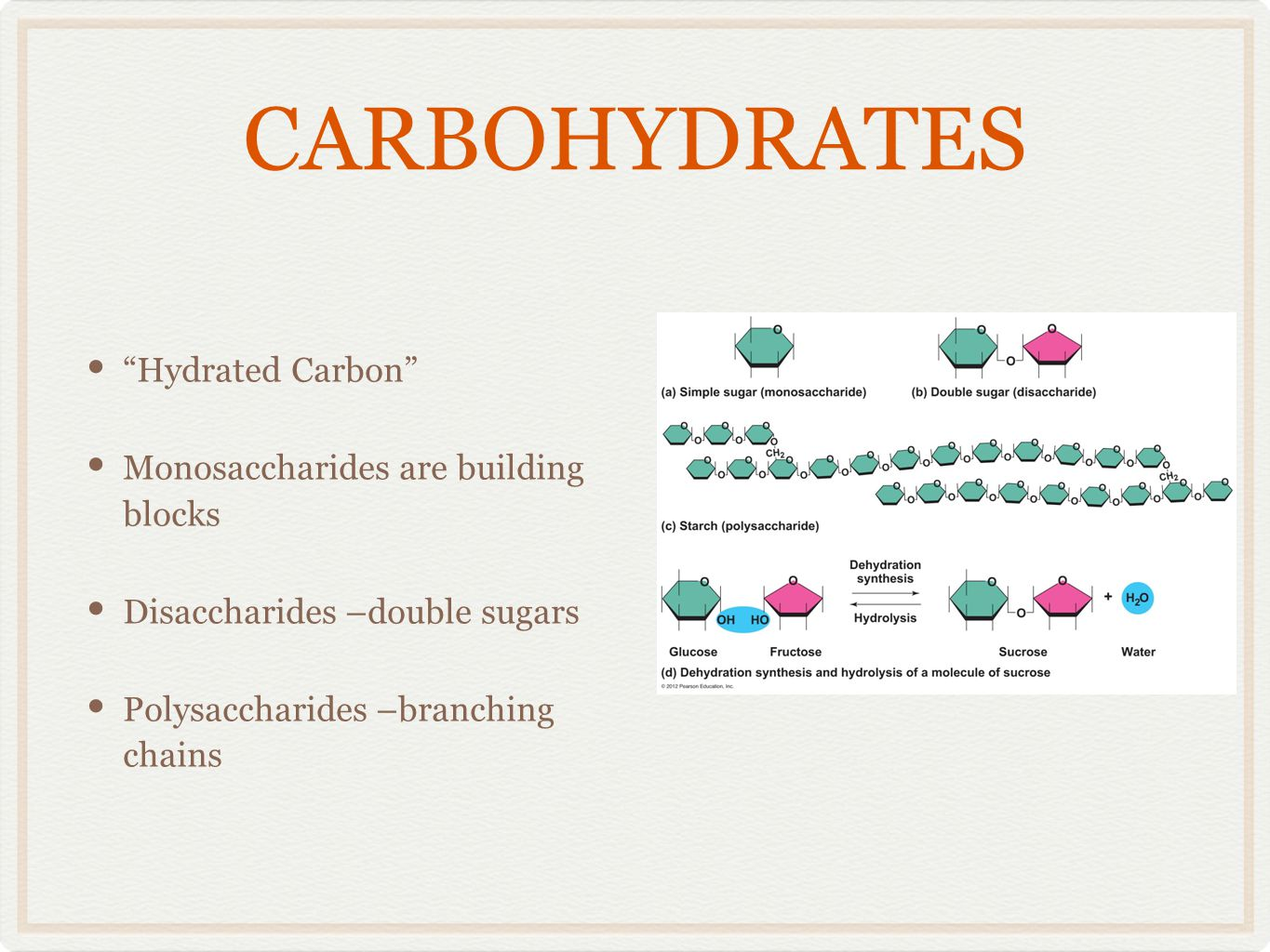 CARBOHYDRATES Hydrated Carbon Monosaccharides are building blocks
