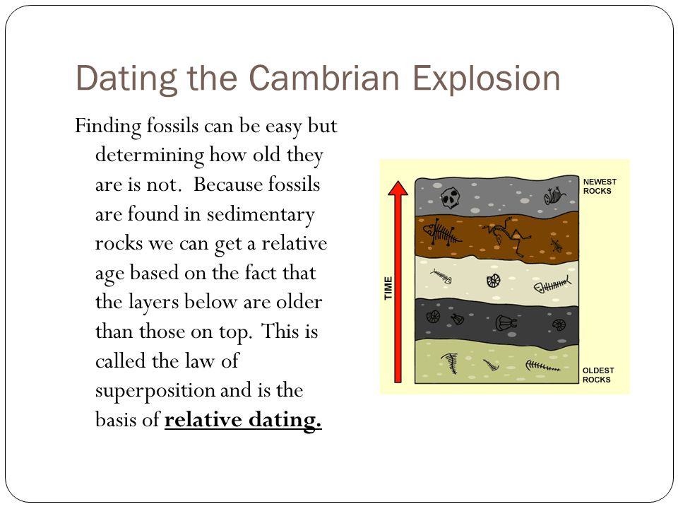 Can relative dating be used to determine the exact age of a rock