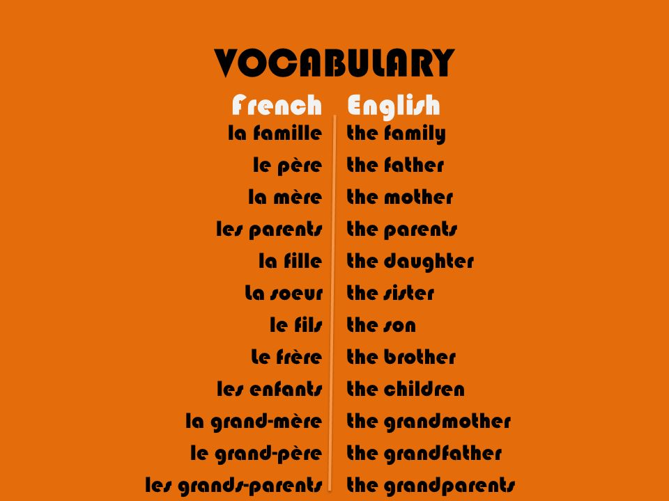 VOCABULARY French English
