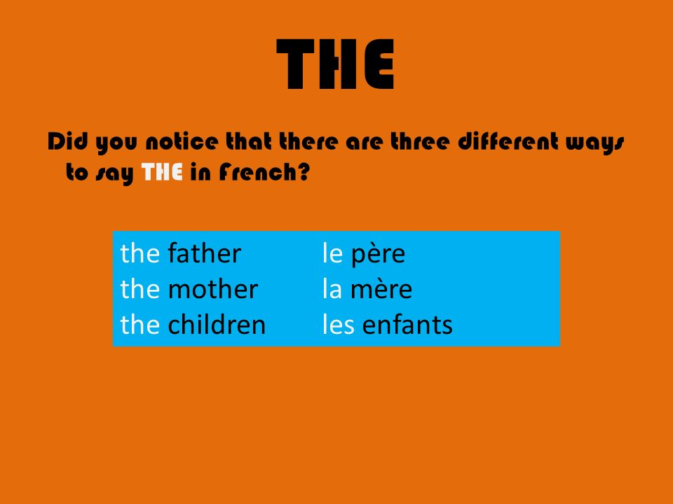 THE the father le père the mother la mère the children les enfants