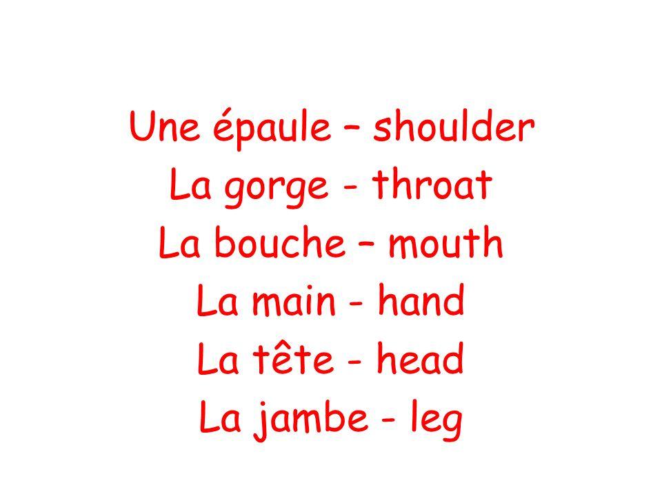 Une épaule – shoulder La gorge - throat La bouche – mouth La main - hand La tête - head La jambe - leg