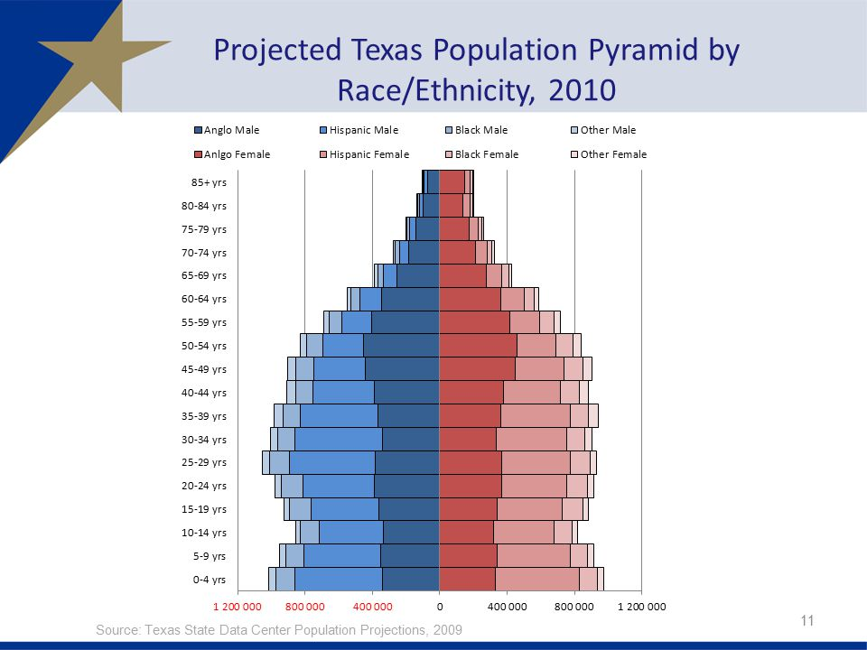 Projected Texas Population Pyramid by Race/Ethnicity, 2010