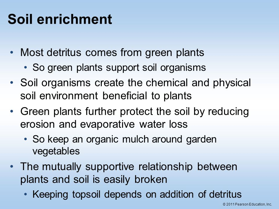 Soil the foundation for land ecosystems ppt download for What does soil come from