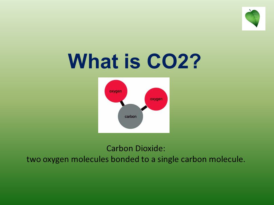 research oxygen and carbon dioxide essay Oxygen and carbon dioxide essays: over 180,000 oxygen and carbon dioxide essays, oxygen and carbon dioxide term papers, oxygen and carbon dioxide research paper, book reports 184 990 essays, term and research papers available for unlimited access.
