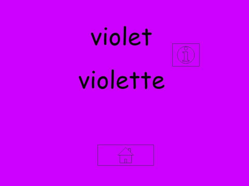 violet violette
