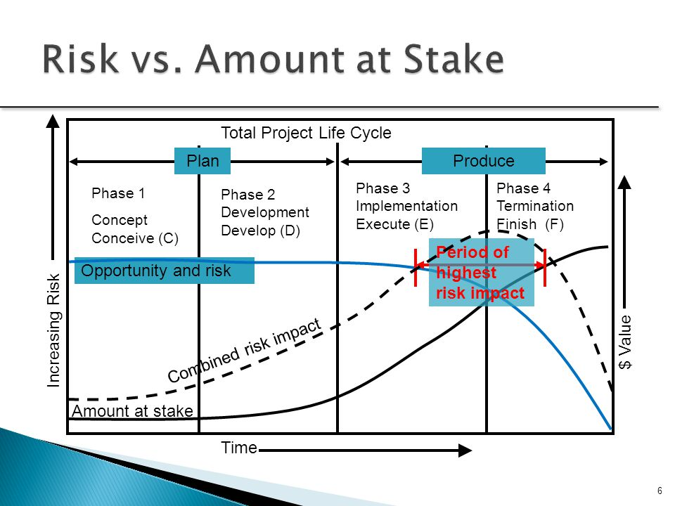 Risk vs. Amount at Stake Total Project Life Cycle Plan Produce