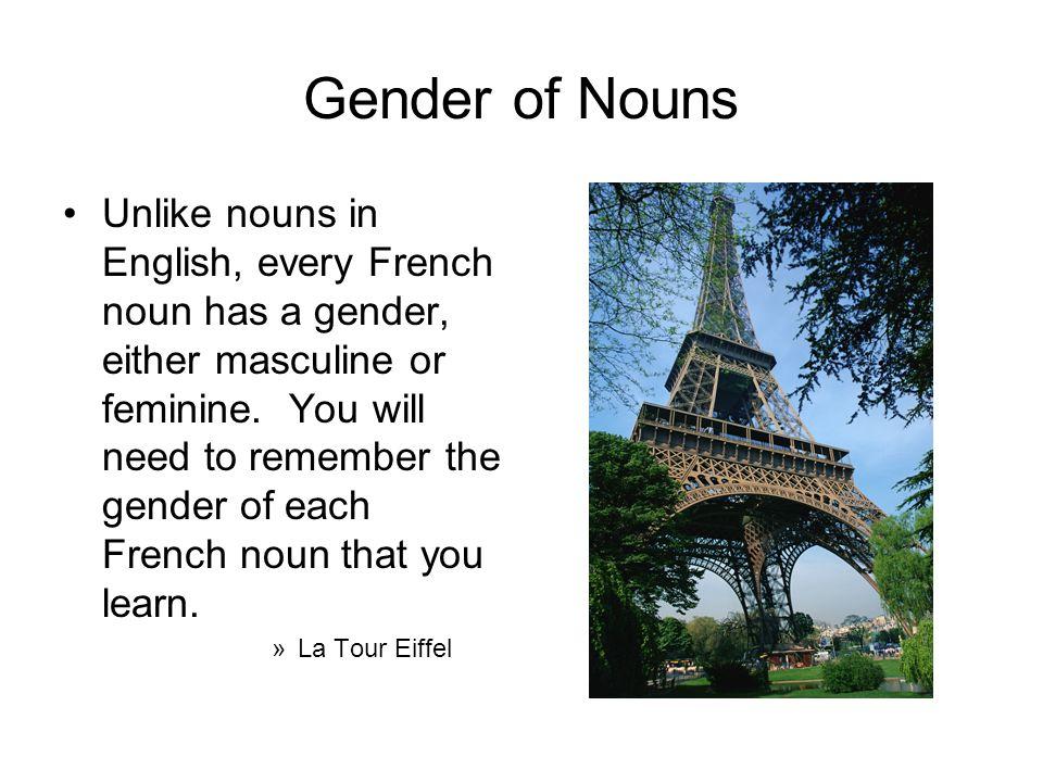 Gender of Nouns