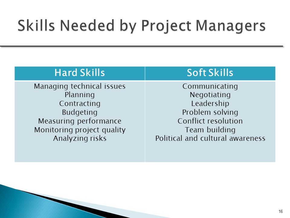skills required by a project manager essay The title of senior manager is most often used and encountered and used in  of  heart and success can depend on your personality and skills.