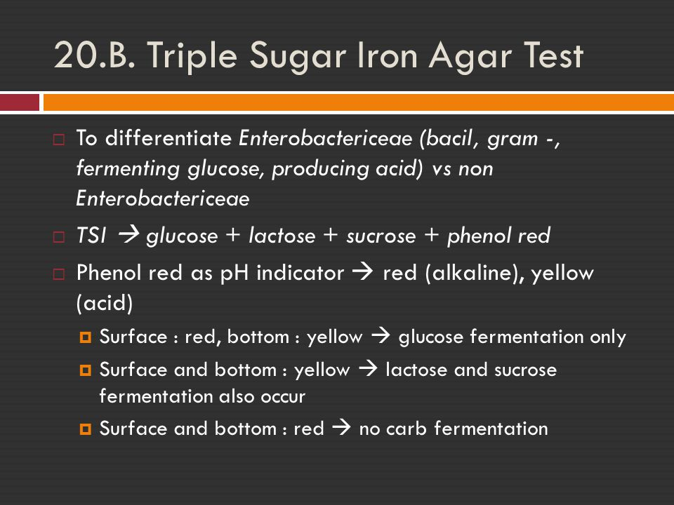 triple sugar test in microbiology Triple sugar iron agar m021i and for microbial limit test for confirming the  presence of salmonellae bailey and scotts diagnostic microbiology, 7th ed triple  sugar.