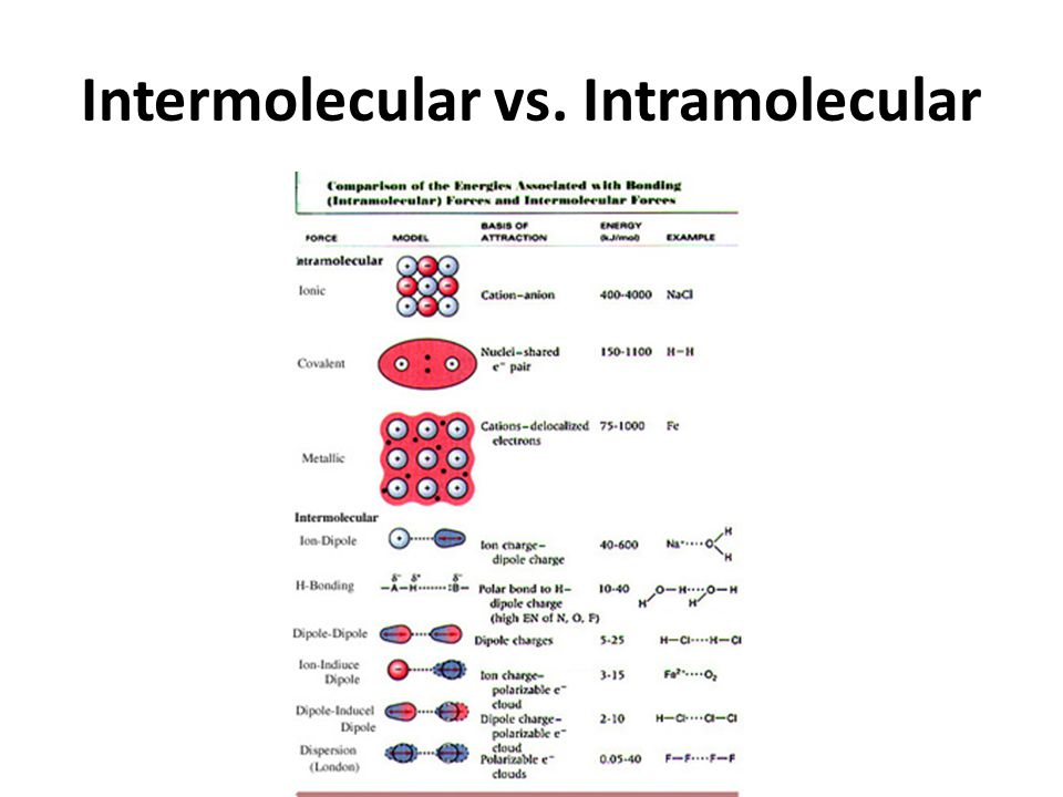 Intermolecular vs. Intramolecular