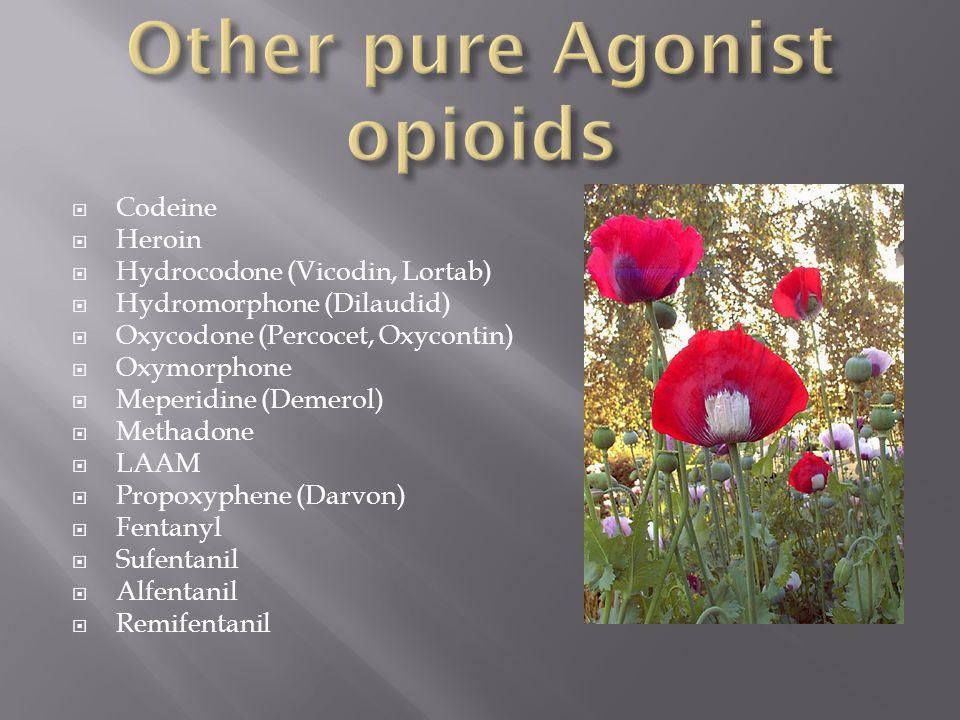 Prescription drug abuse ppt video online download 80 other pure agonist opioids publicscrutiny Images