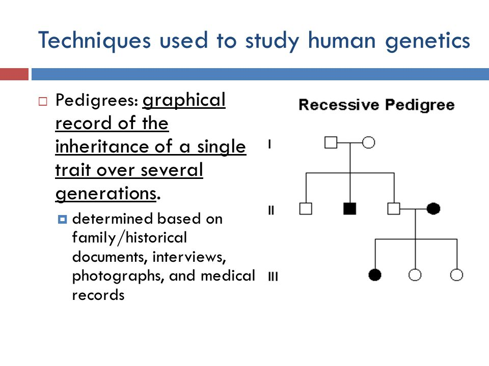 Unit 11 Human Genetics. - ppt download