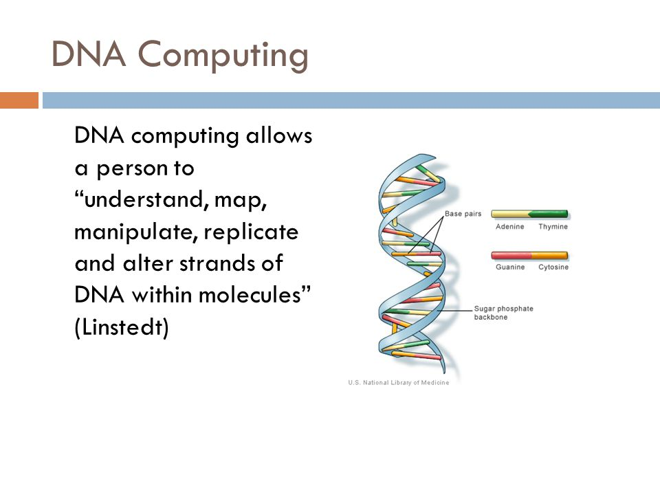 the question of whether dna computing was the future or the end Cloud computing is not equal to the future of computing much difference with a cloud vps from end users whether organic computing like dna computing.