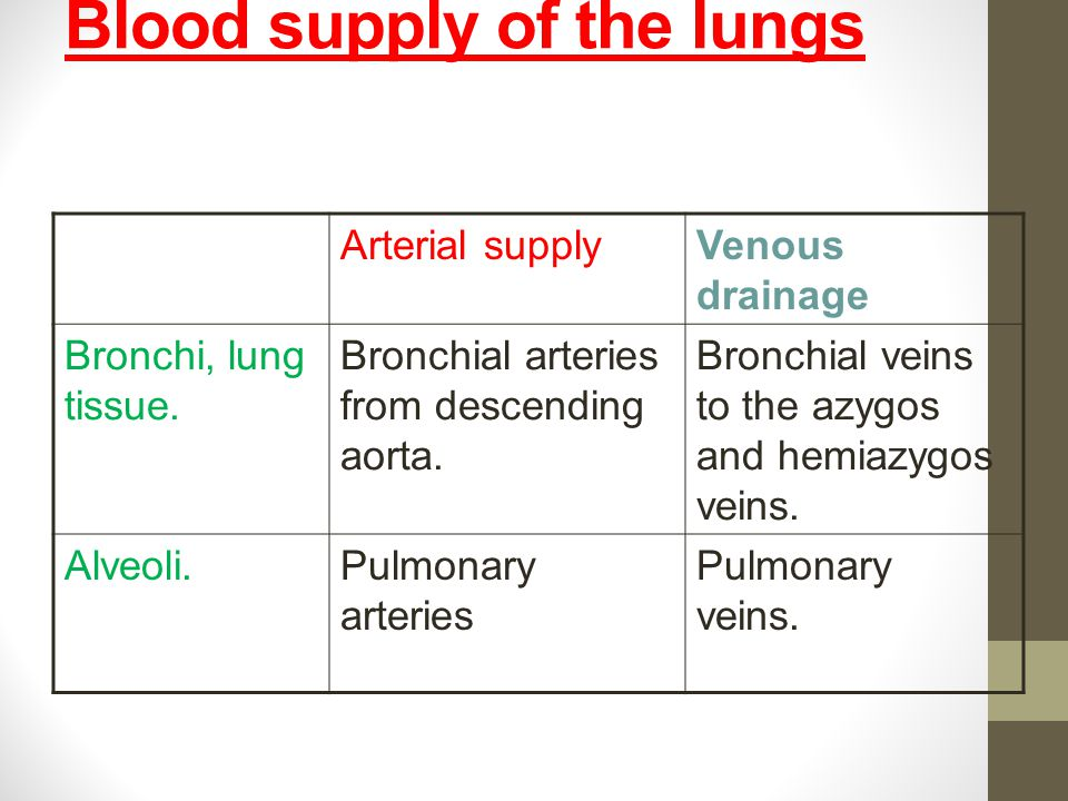 Bronchial vein drainage
