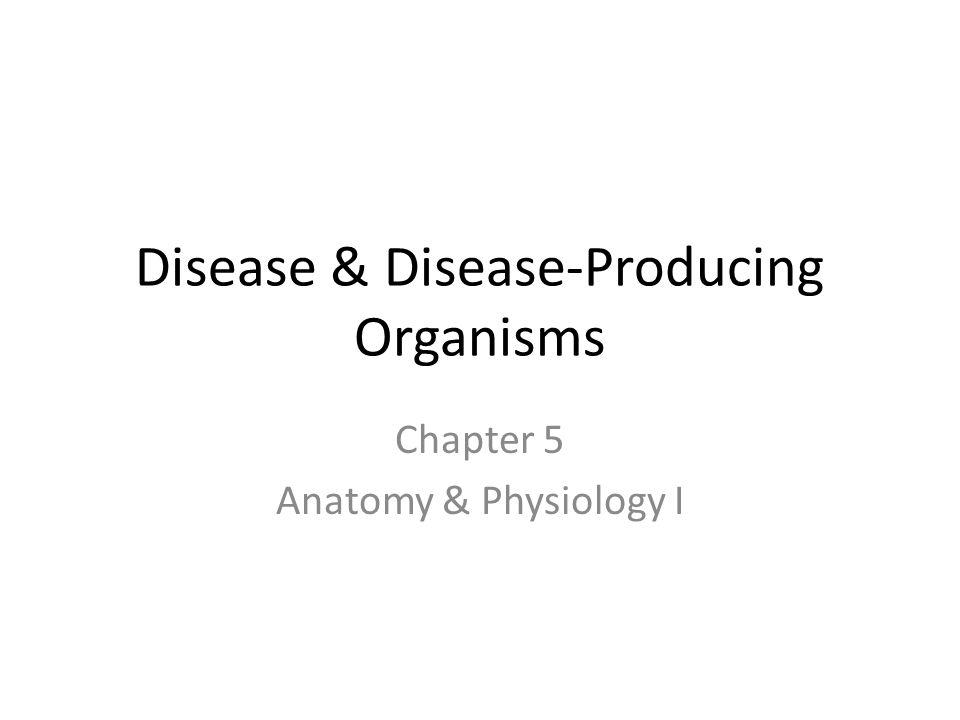 Disease & Disease-Producing Organisms - ppt video online download