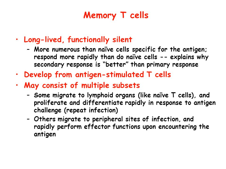 Memory T cells Long-lived, functionally silent