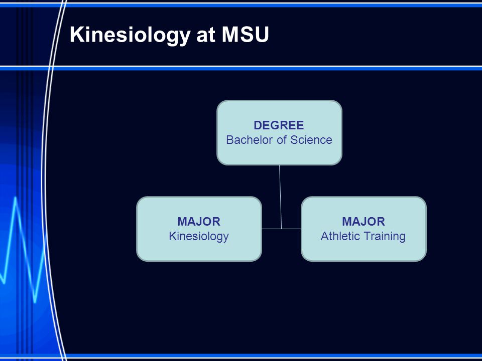 College of Education Kinesiology & Athletic Training - ppt ...