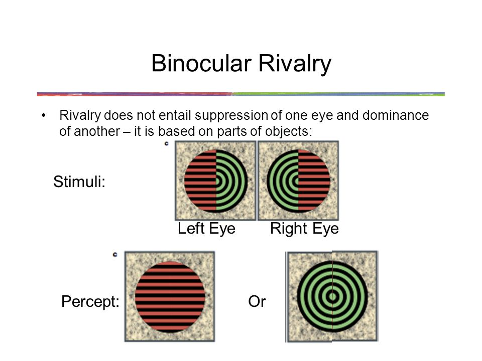 Binocular Rivalry Stimuli: Left Eye Right Eye Percept: Or
