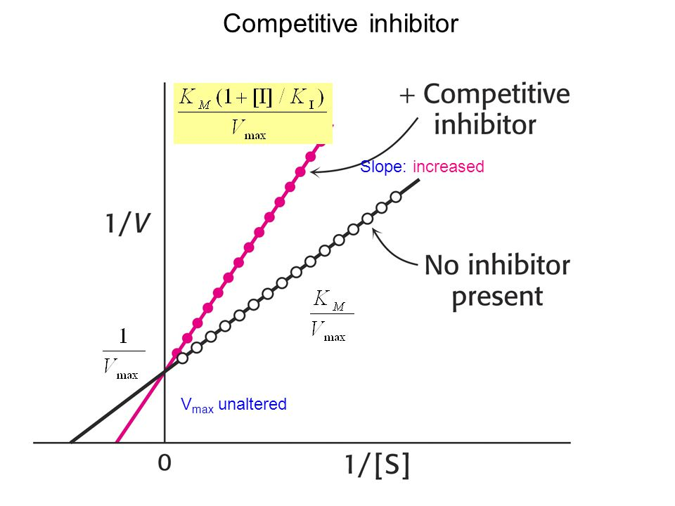 Competitive inhibitor