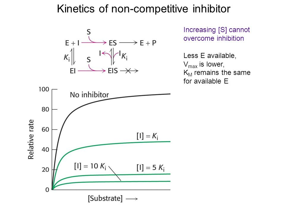 enzyme kinetics of acetylcholinesterase Practical acetylcholinesterase assay  acetylcholinesterase  enzyme kinetics animation - duration: 17:14.