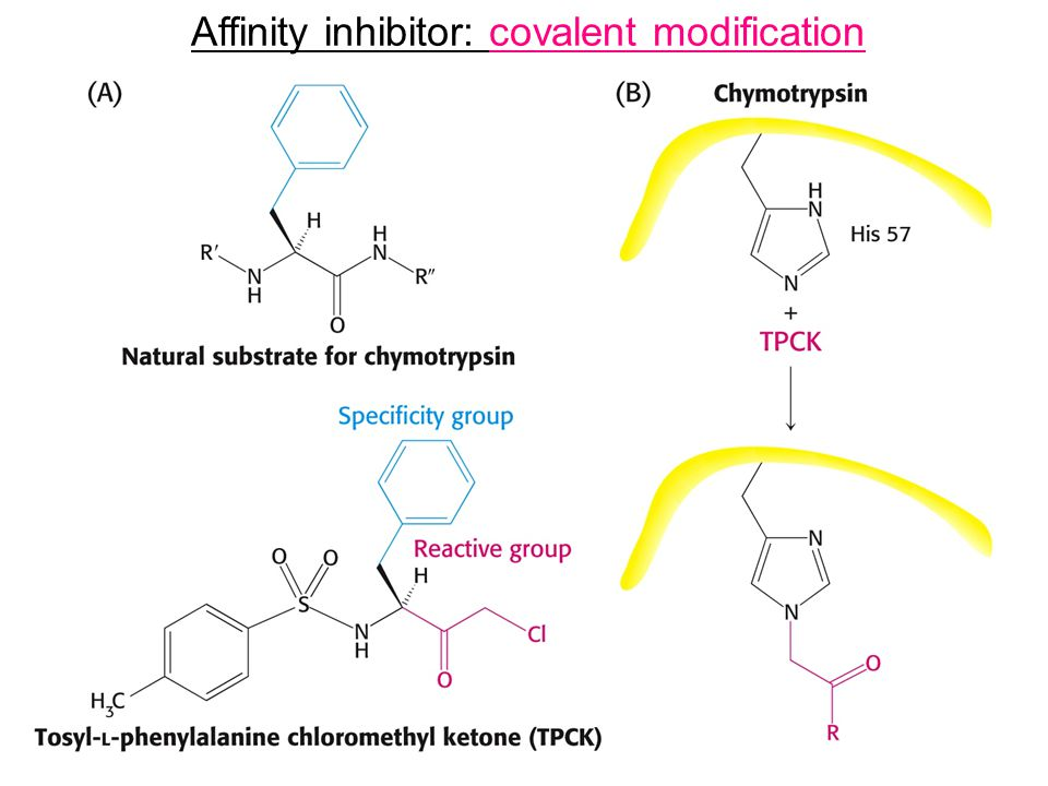 Affinity inhibitor: covalent modification