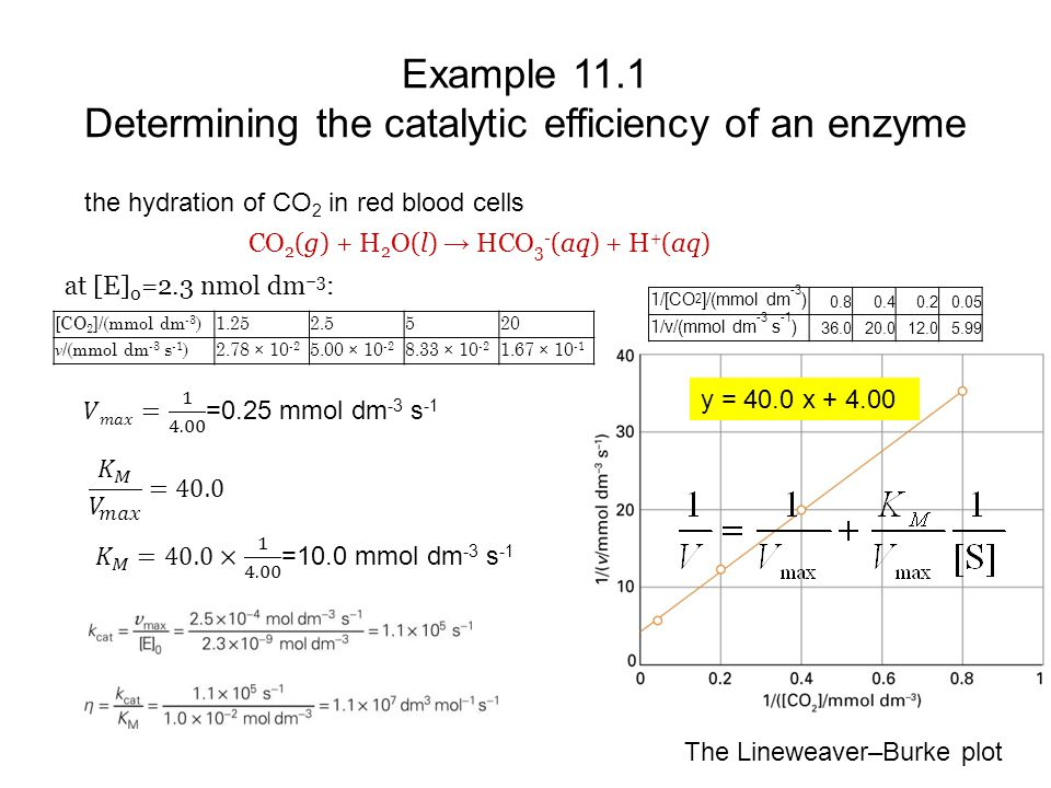 Example 11.1 Determining the catalytic efficiency of an enzyme