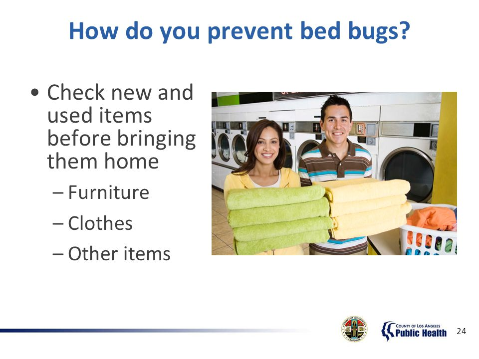 How To Check For Bed Bugs When Buying Used Furniture