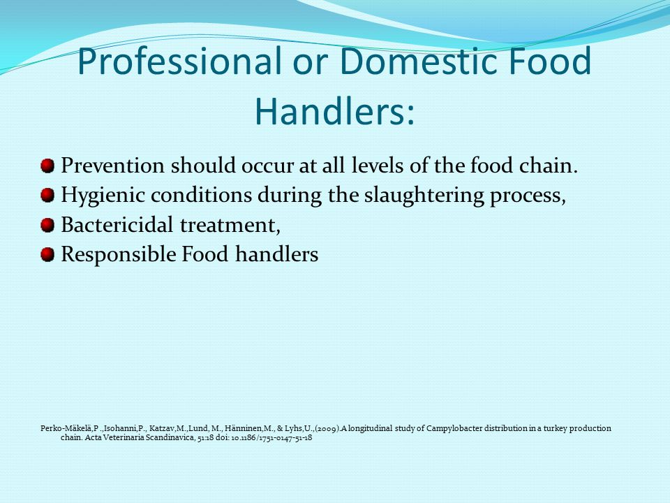 Professional or Domestic Food Handlers: