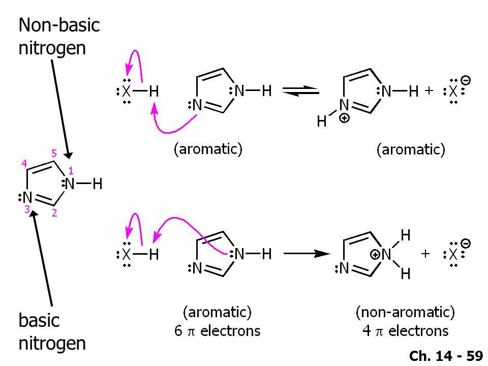 Nitrogen In Rings Are Basic