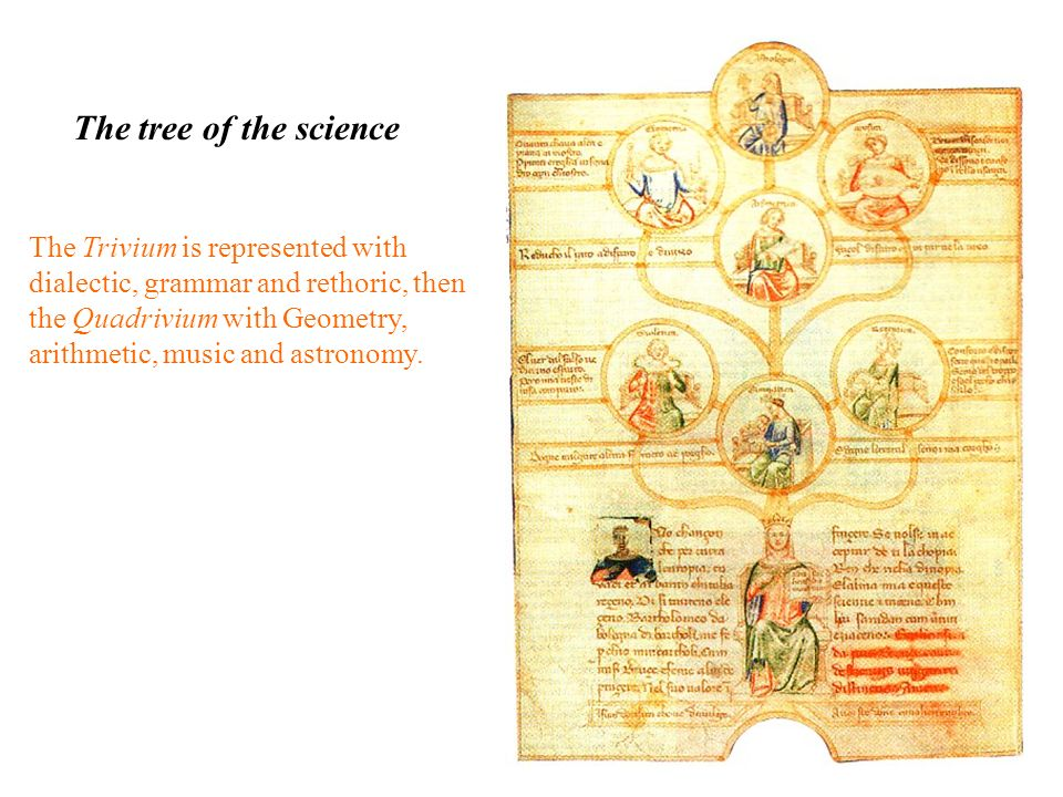 The tree of the science