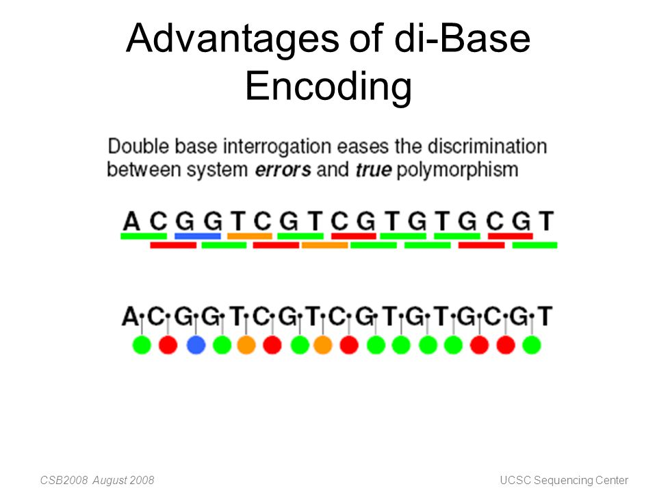 Next generation sequencing platforms ppt video online for Pianificatore di base online