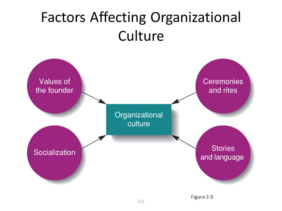 What Factors Do You Think Make Some Organizations Ineffective at Managing Emotions?