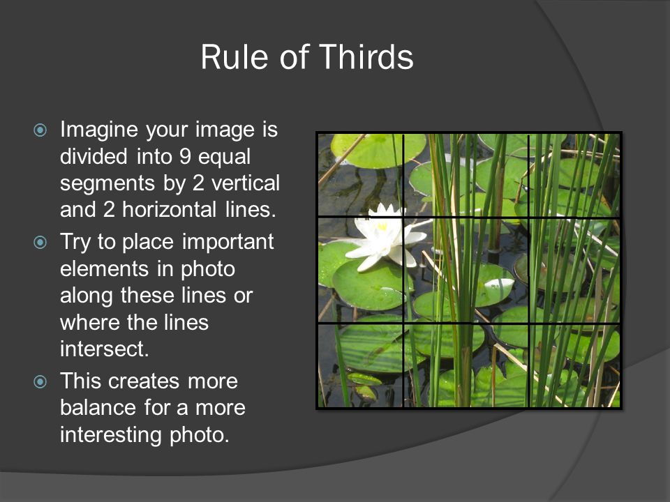Rule of Thirds Imagine your image is divided into 9 equal segments by 2 vertical and 2 horizontal lines.