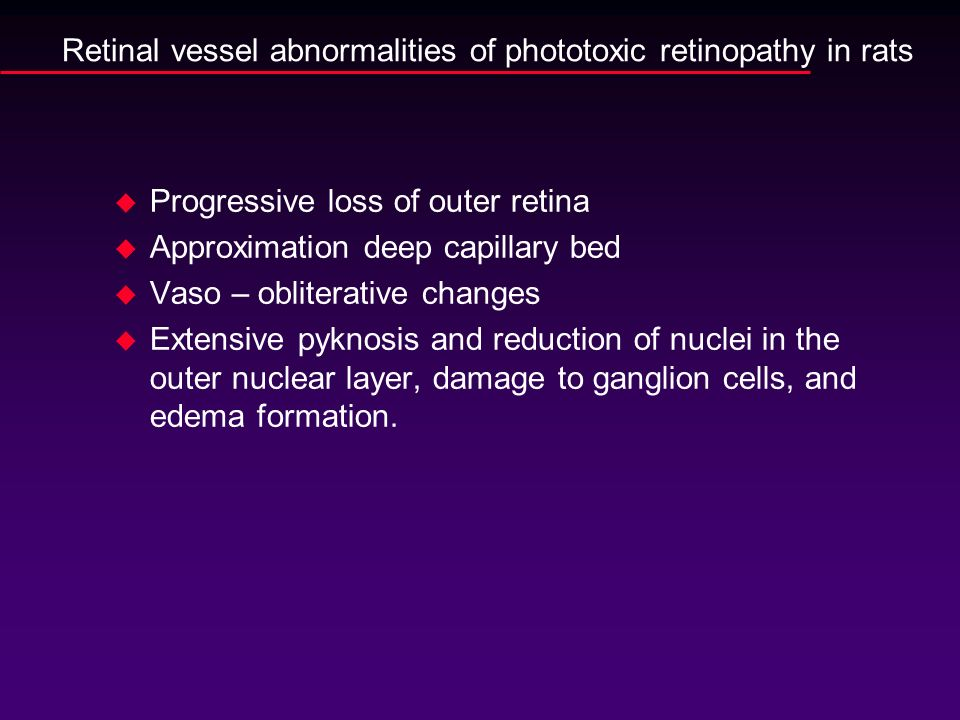 Retinal vessel abnormalities of phototoxic retinopathy in rats