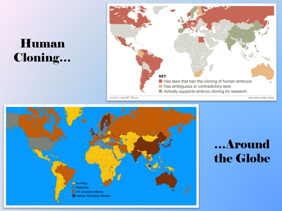 an introduction to the issue of human cloning in the united states The need for legislation on this issue  oppose human cloning, united states conference  introduction to the developing human in human embryology.