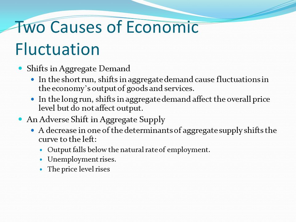 Two Causes of Economic Fluctuation