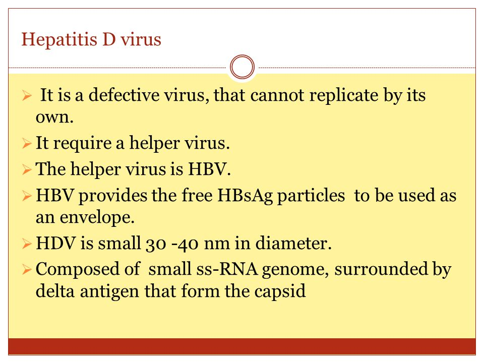 Hepatitis D virus It is a defective virus, that cannot replicate by its own. It require a helper virus.