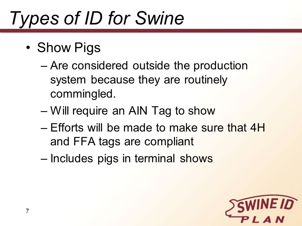 Types of ID for Swine Show Pigs