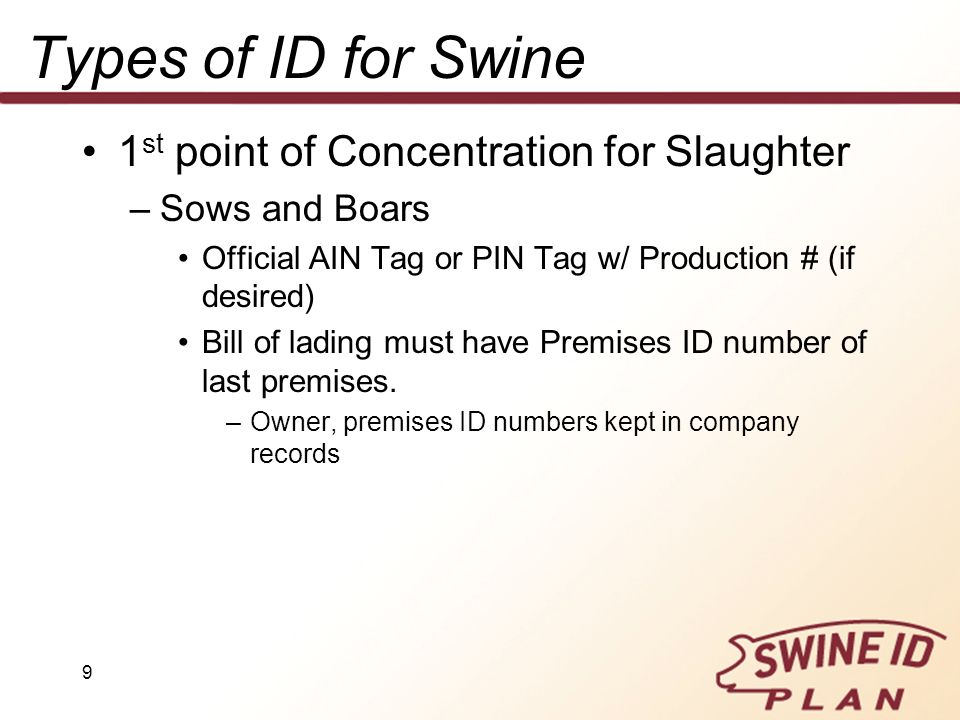 Types of ID for Swine 1st point of Concentration for Slaughter