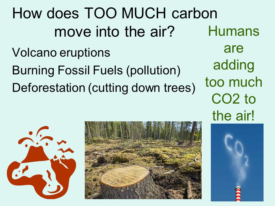 How does TOO MUCH carbon move into the air