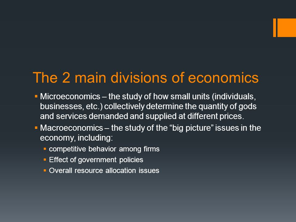 The 2 main divisions of economics