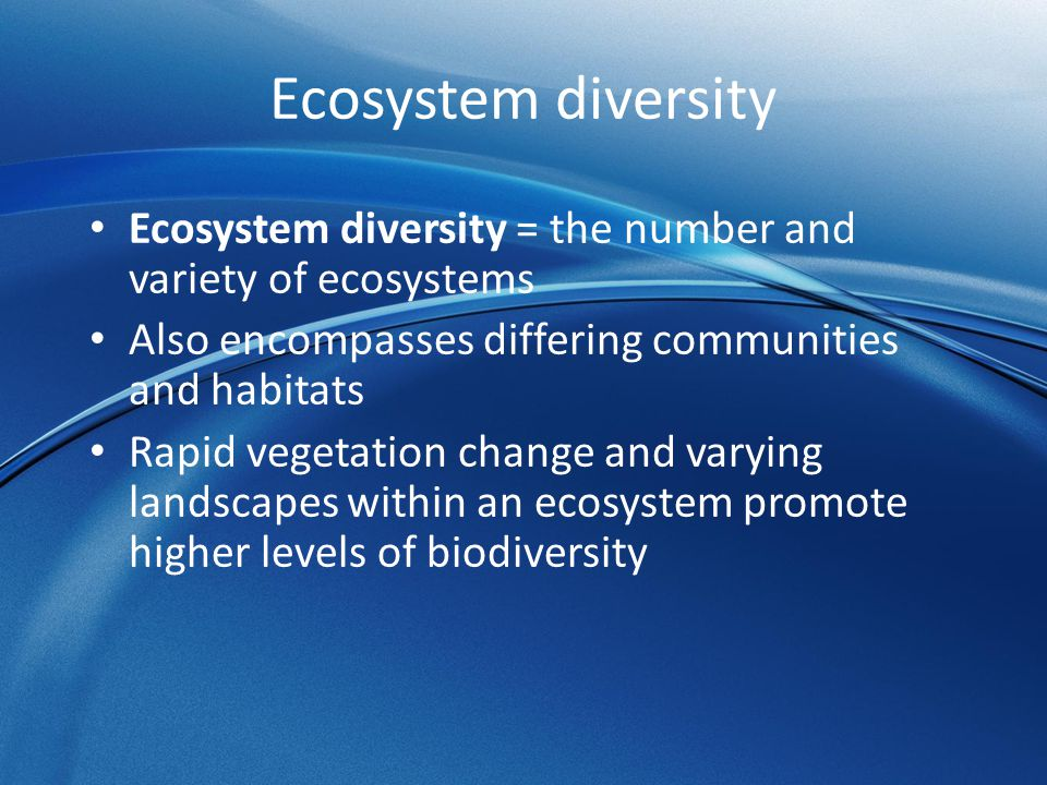 biomes and diversity 3 essay Biomes: our earth's major  __f__3 all the plants and  soil composition affects the number and diversity of organisms in an environment by providing or not.