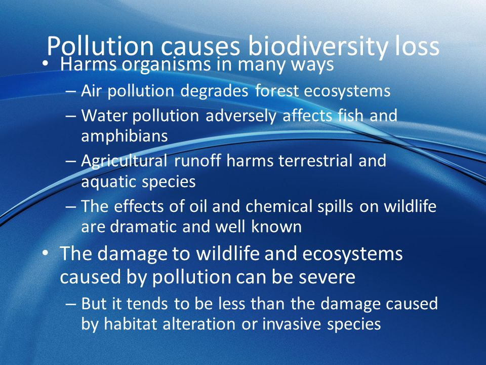The Impact of Invasive Species