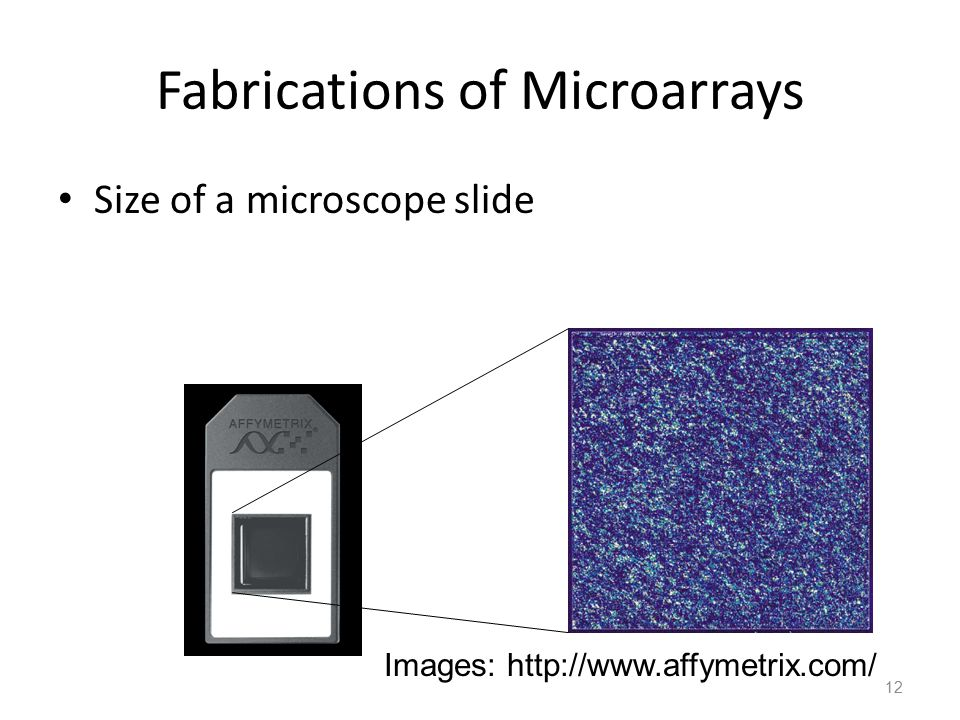 Fabrications of Microarrays